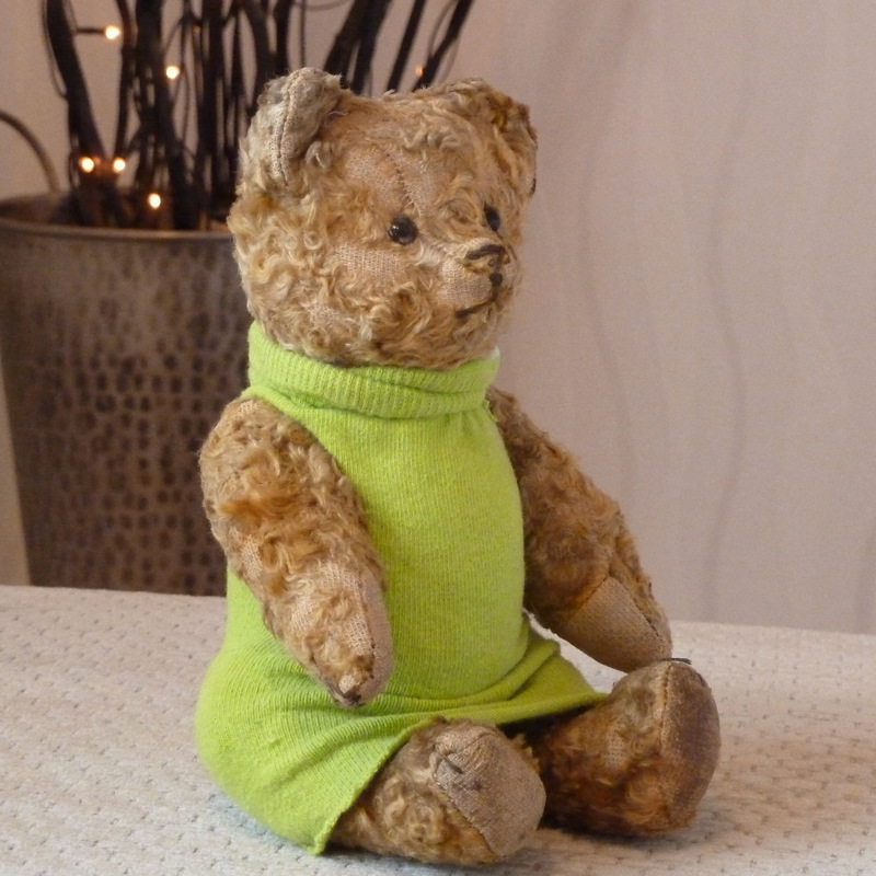 Gender Neutral Teddy